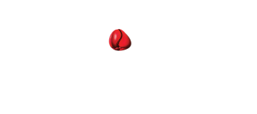 Kola Restaurant & Ultra Lounge – Awards